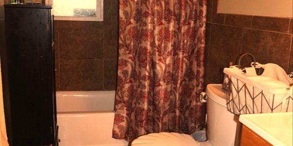 25 Zenith bathroom